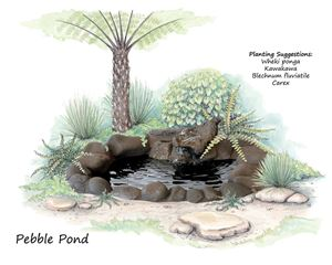 Picture of Pebble Pond